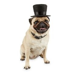 Bond & Co. Dog Top Hat small / medium s / m pet novelty clothing and accessories