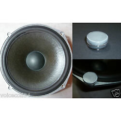 Paint Renovating For ROLA Celestion T2619 Woofer - and medium Ditton 25, 44, 66
