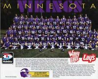 1993 MINNESOTA VIKINGS NFL FOOTBALL TEAM 8X10 PHOTO