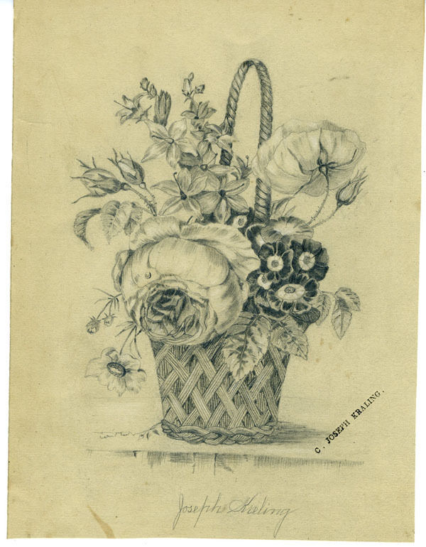 How To Draw A Beautiful Flower Basket : Beautiful th century drawing of basket flowers