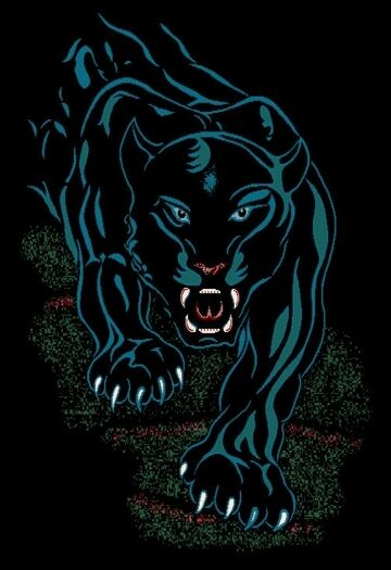Black Panther Jaguar Area Rug 4x6 African Animal Carpet