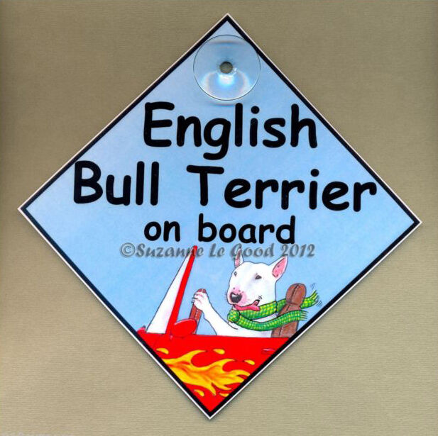 New english bull terrier on board laminated dog in car