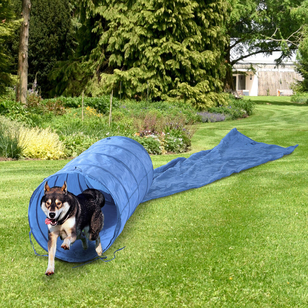 Dog Agility Equipment Tunnel For Training Amp Obedience With