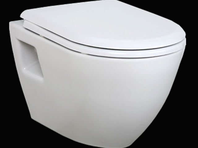 h nge dusch wc taharet taharat bidet intimdusche tp325 mit soft close deckel ebay. Black Bedroom Furniture Sets. Home Design Ideas