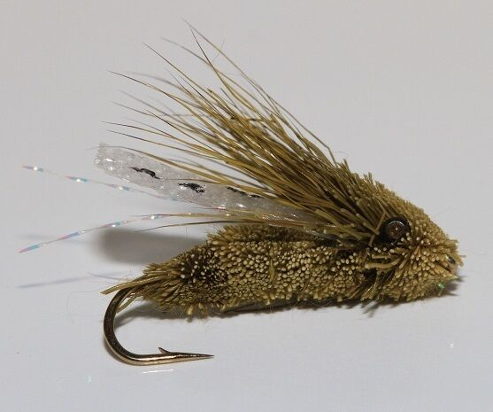 12 dry cicada trout bass flies for fly fishing rods ebay for Ebay fly fishing
