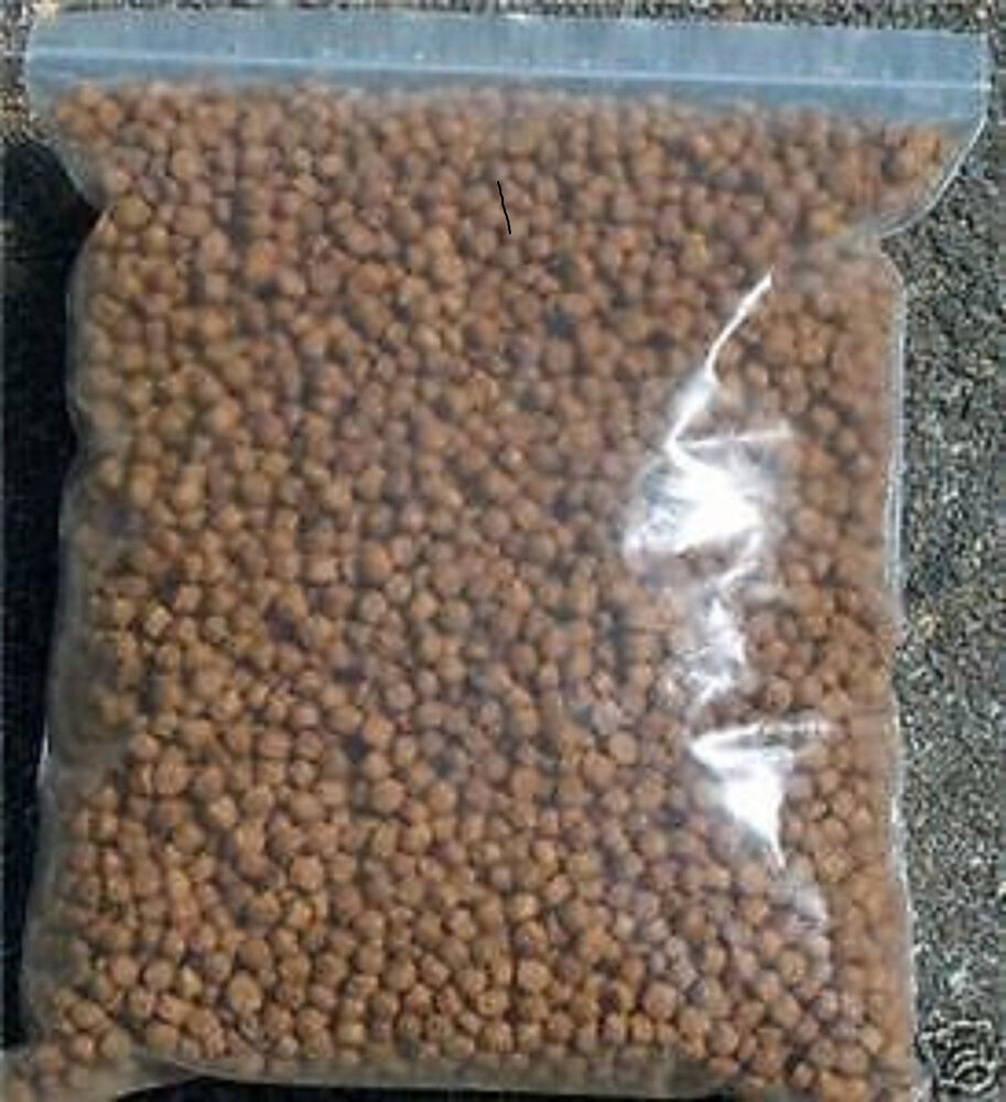 Koi fish koi food pond fish food bulk pond food koi for Bulk koi for sale