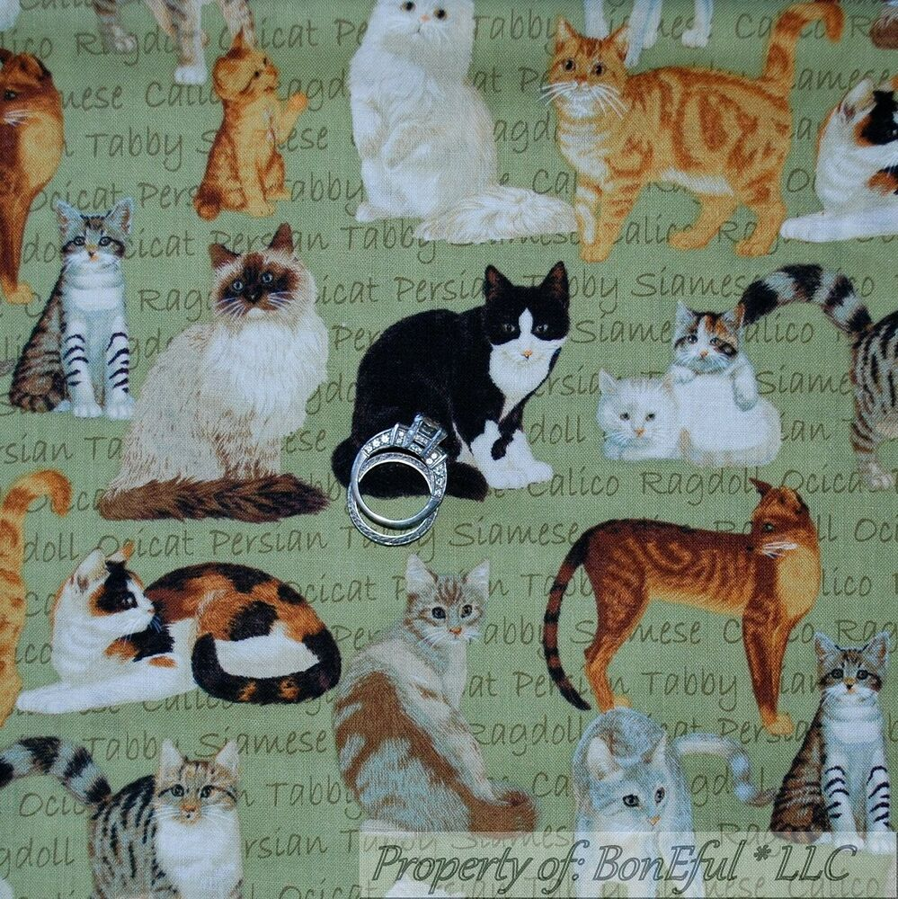 Boneful Fabric Fq Cotton Quilt Kitty Cat Feline Vtg Tabby