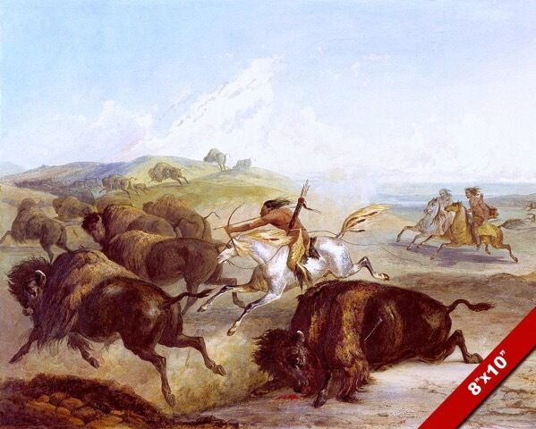 NATIVE AMERICAN INDIANS HUNTING BISON BUFFALO ON HORSE ...