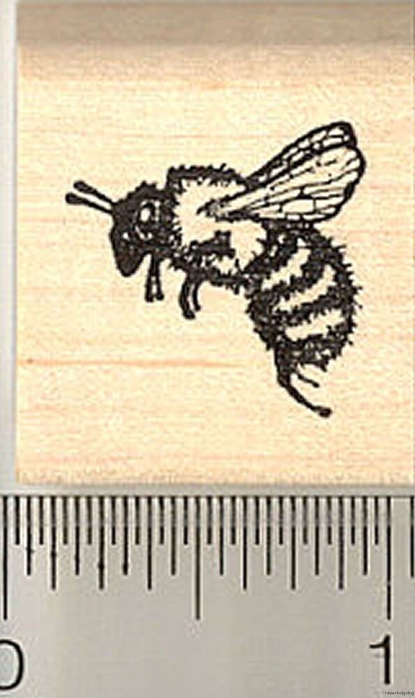 Honey Bee Rubber Stamp, Small A3310 WM | eBay - photo#23