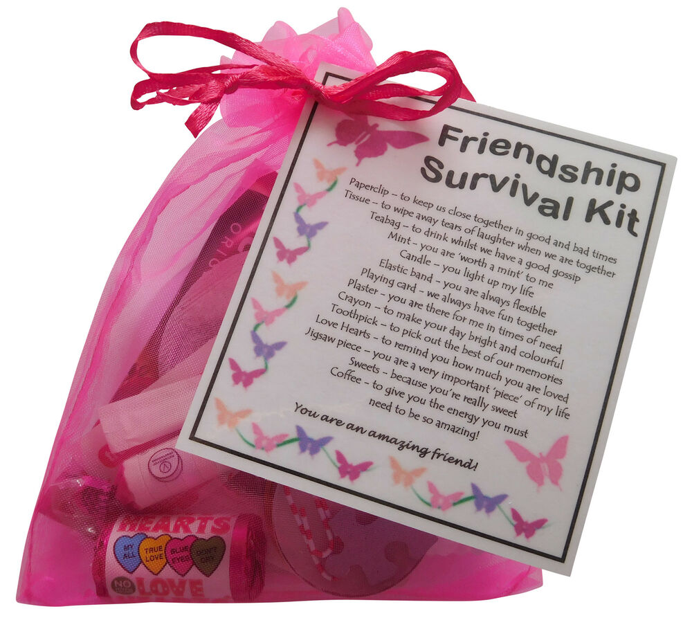Christmas Gift Ideas For Girl Best Friends: Friendship /BFF / Best Friend Survival Kit Gift