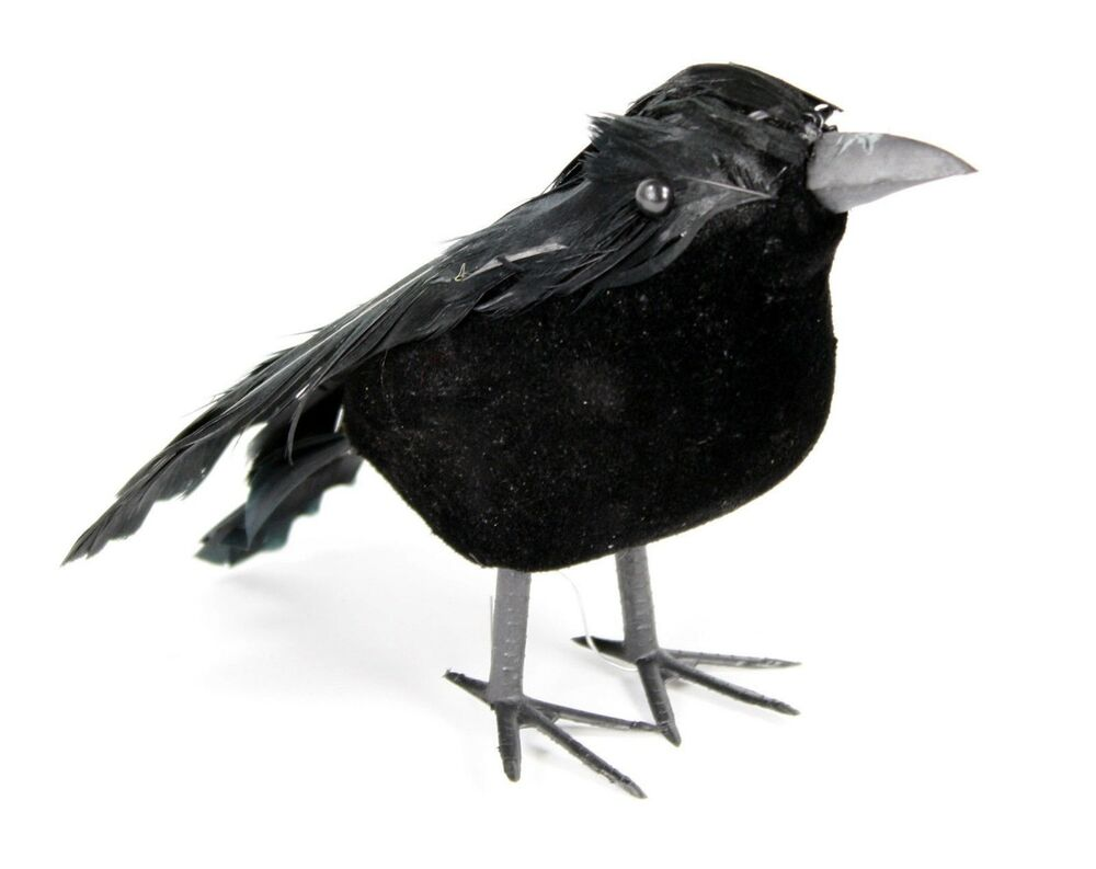 Crow Bird Prop : Quot black raven crow bird haunted mansion halloween