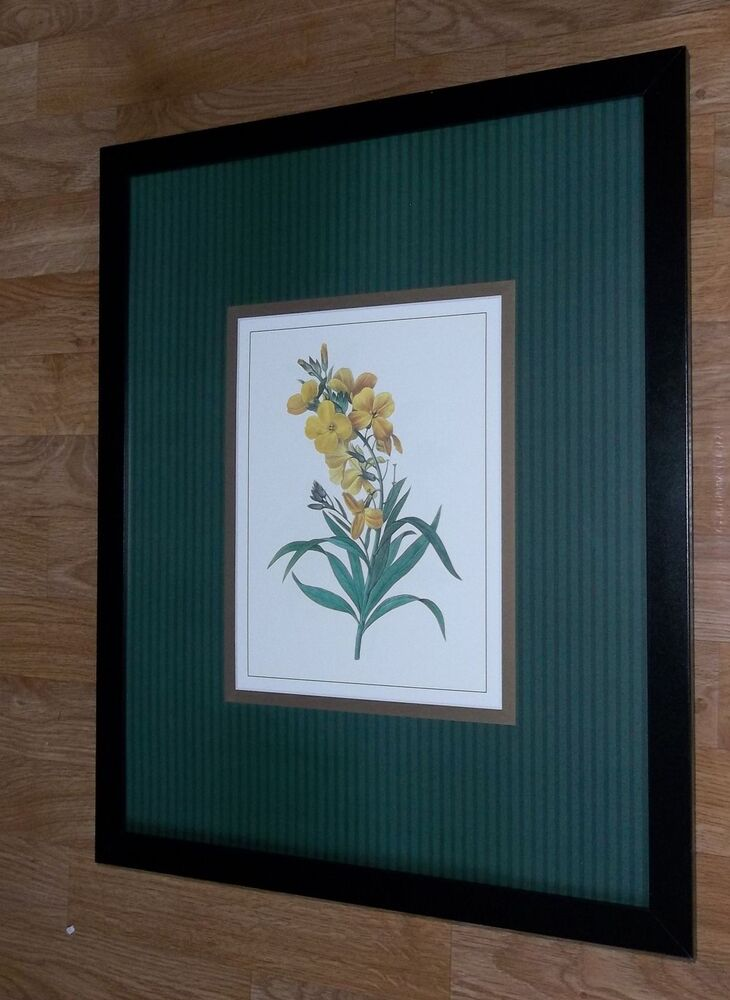 Vintage Botanical wall art print - 20''x16'', framed ...