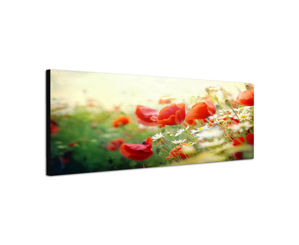 120x40cm wandbild leinwand keilrahmen panorama mohnblumen vintage sinus art ebay. Black Bedroom Furniture Sets. Home Design Ideas