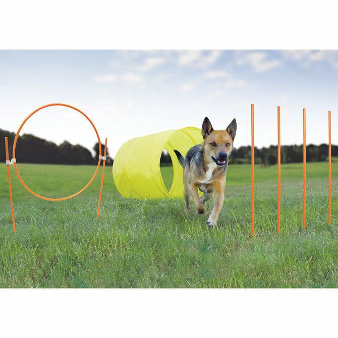 Kyjen Outdoor Dog Agility Starter Kit With Dog Tunnel