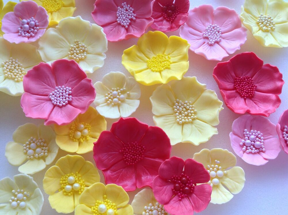 edible icing sugar flowers wedding cake decorations 12 flowers cupcake toppers ebay. Black Bedroom Furniture Sets. Home Design Ideas