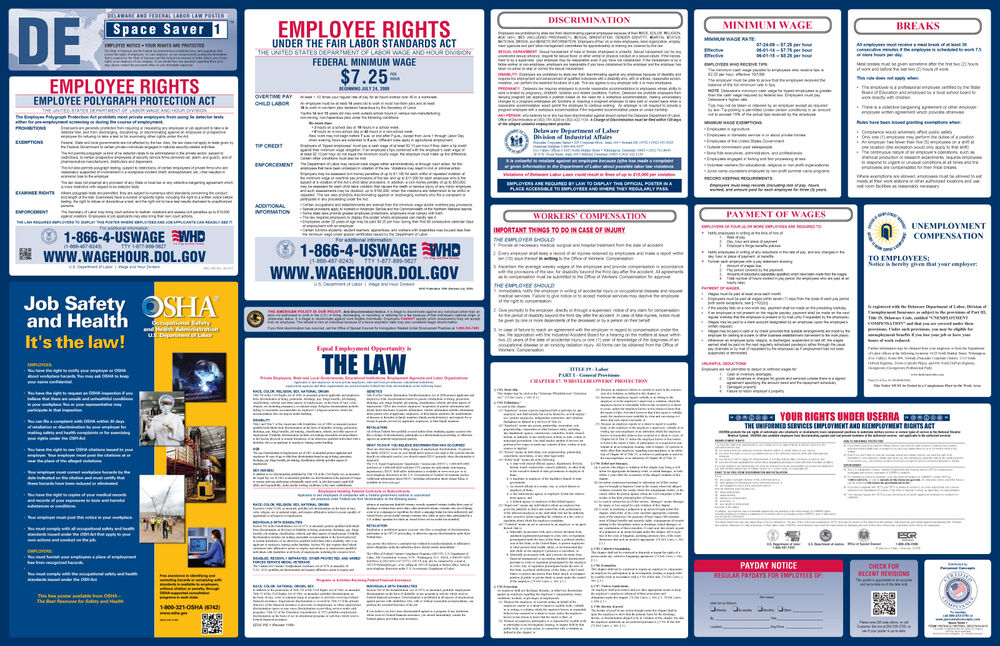 federal vs state employment laws essay Summary of federal & state discrimination laws find out more about this topic, read articles and blogs or research legal issues, cases, and codes on findlawcom.