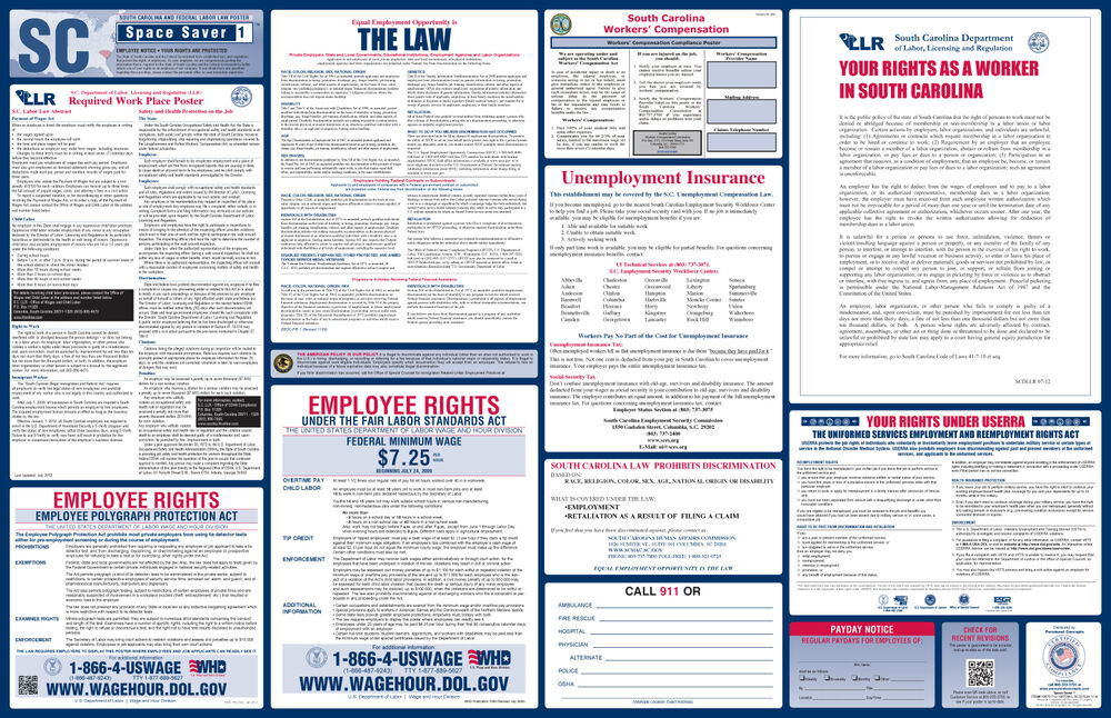 2018 south carolina state federal labor law poster all on one ebay publicscrutiny Gallery