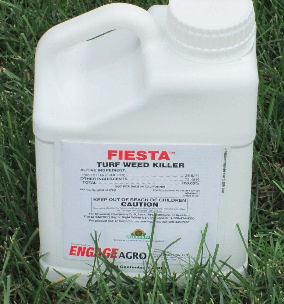 Iron Based Weed Killer Safe Tall/Fine Fescue Lawns 1