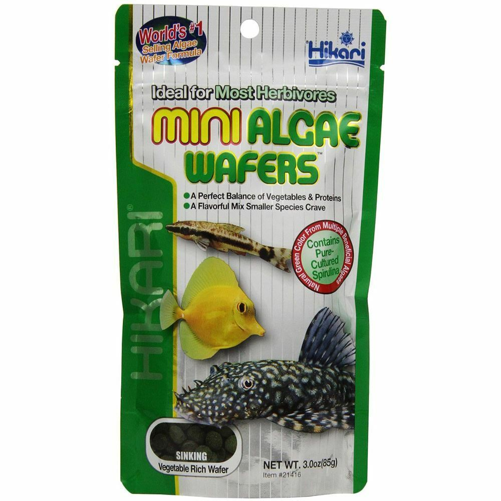 Hikari mini algae wafers 85g plecostomus bottom feeders ebay for Bottom feeder fish list
