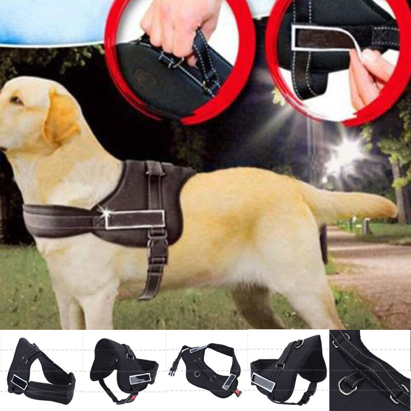 hot big dog adjustable harness pet walking out trainning harness vest collar ebay. Black Bedroom Furniture Sets. Home Design Ideas