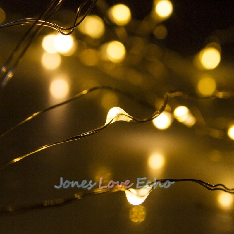 50 LED 5M Copper Wire LED Twinkle Light String Fairy Light Warm White Pure White eBay