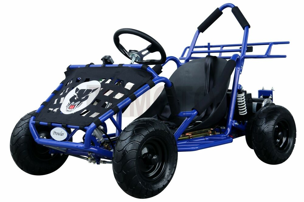 electric go kart 48v 1000 watt electric 3 speeds off road. Black Bedroom Furniture Sets. Home Design Ideas