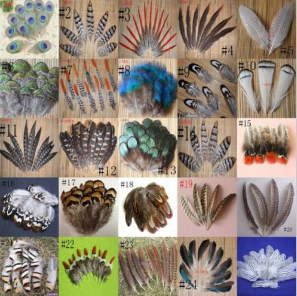 Wholesale 10-100PCS beautiful 2-20cm/2-8inches Pheasant Tail & Peacock Feathers