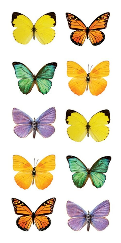 Selective image within butterfly printable