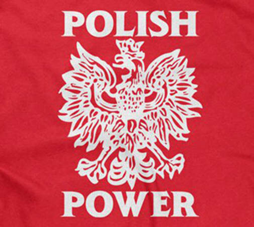 Polish Quotes: POLISH POWER T-SHIRT Polska Poland Funny Saying Sayings