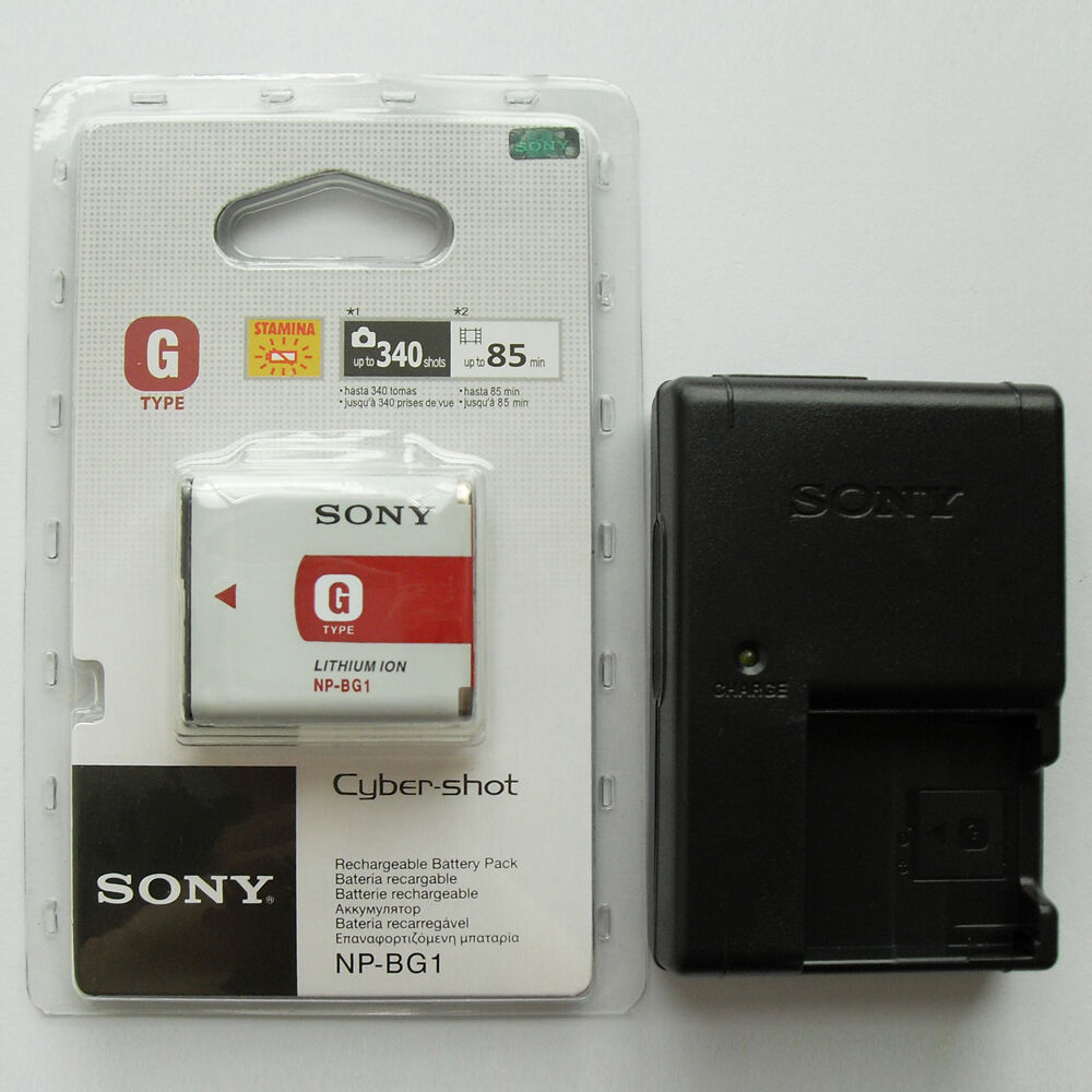 Np Bg1 Battery Amp Bc Csgb Charger For Sony Dsc W200 W55 W70