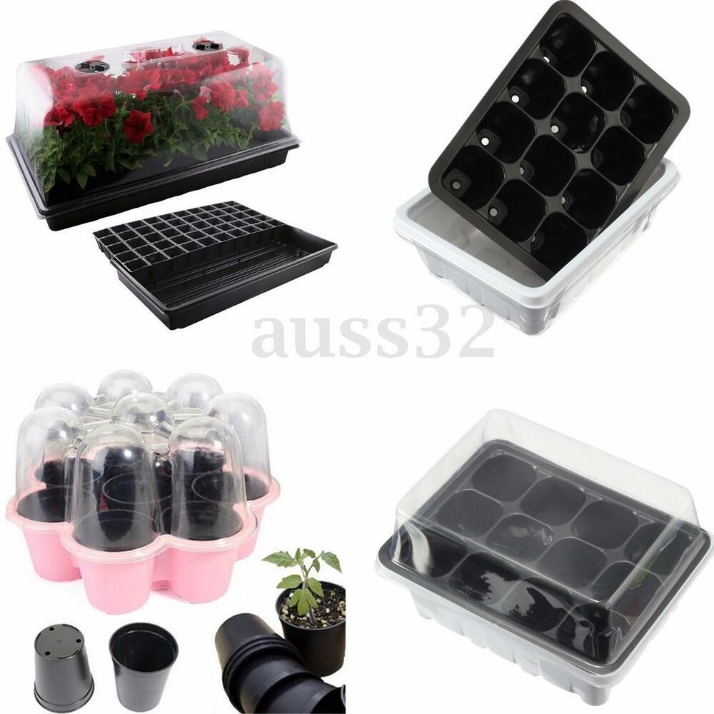 Germination Seed Starter Tray Seed Box Flower Plant Pot