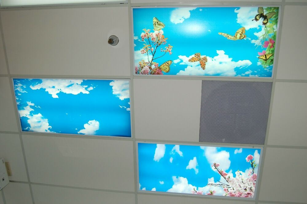 Medical Dental Office Sky Light Ceiling Panels Fluorescent