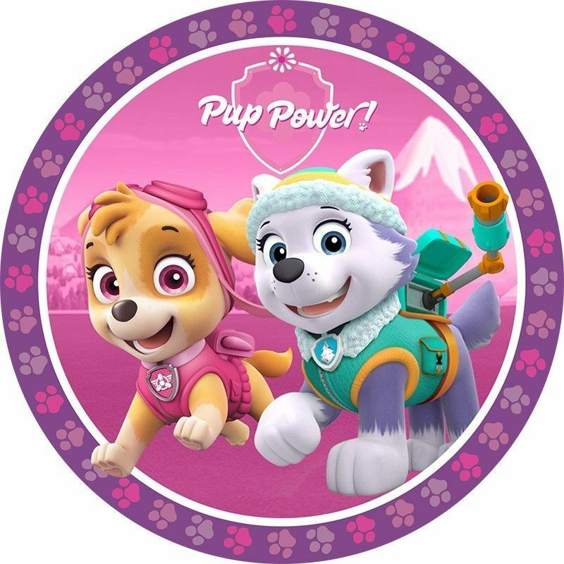 Edible Cake Decorations Paw Patrol : Paw Patrol Edible Cake Topper   LICENSED   Skye   16cm ...
