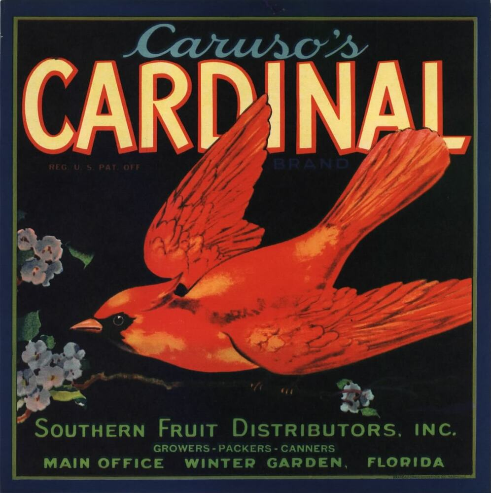 orange crate label florida cardinal 9x9 winter garden original
