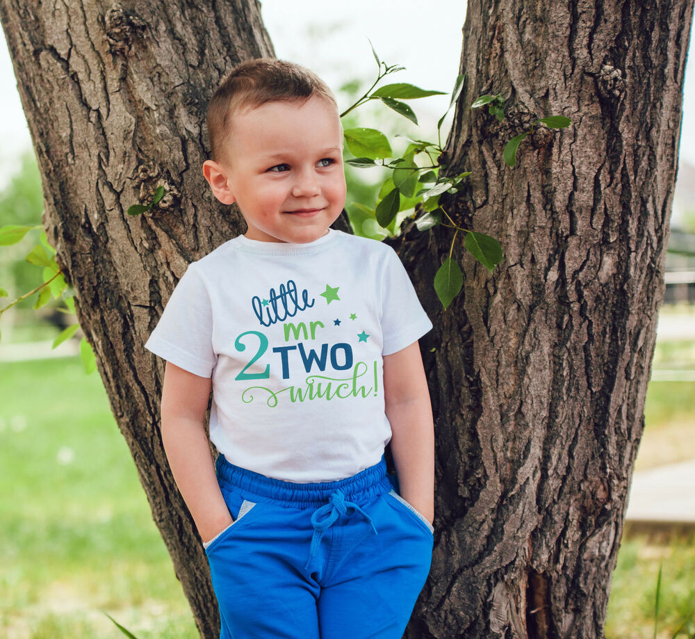 7c217bd0 little mr two much 2nd birthday tshirt baby/toddler/children/kids /baby/ toddler | eBay