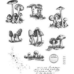 NEW Tim Holtz Stampers Anonymous ''TINY TOADSTOOLS'' Rubber Cling Stamp Set 2019