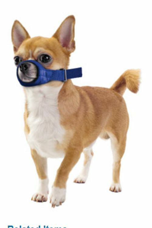 Dog Muzzle For Small Dogs