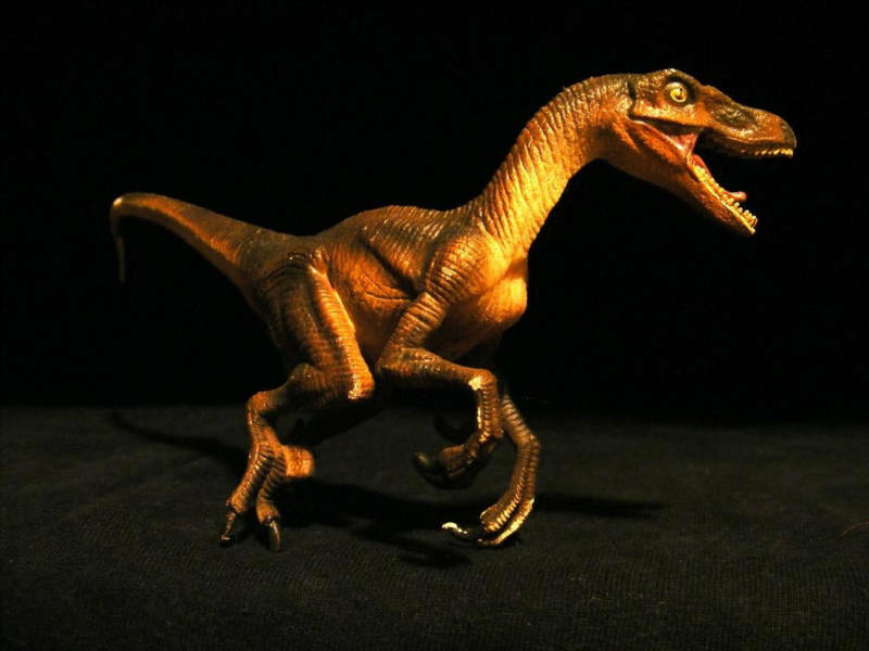 Can jurassic park raptor toys