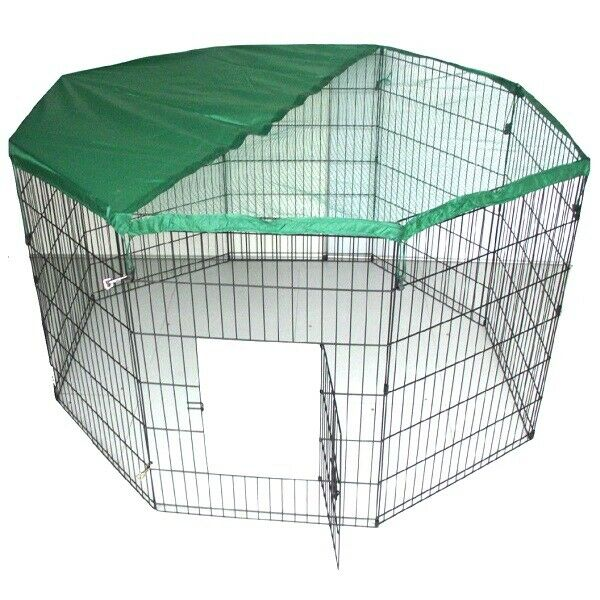 dog puppy pet rabbit cat guinea pig play pen run black