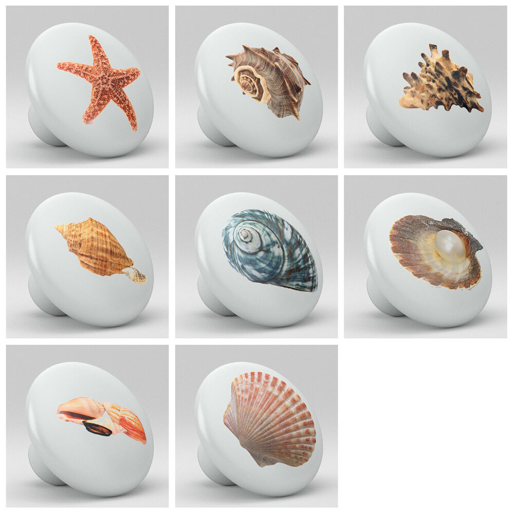... Seashell Cabinet Knobs And Pulls By Set Of 8 Sea Shell Design Ceramic Knobs  Pull Kitchen ...