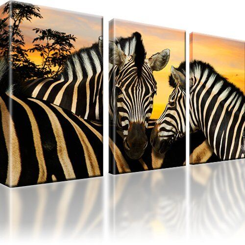 zebras zebra tiere afrika bild auf leinwand bild 3 teilige bilder deko ebay. Black Bedroom Furniture Sets. Home Design Ideas