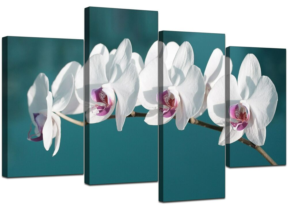 Large Teal White Floral Orchids Canvas Wall Art Prints