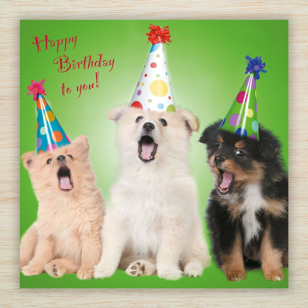 Birthday Cards Cute Dogs Puppies Perfect For Mum Sister