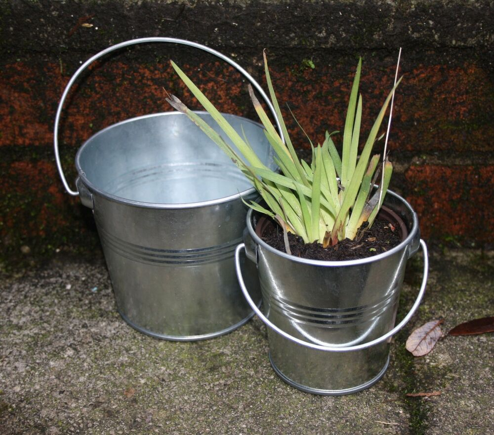 Silver Galvanised Pots Herb Planter Garden Home Plant