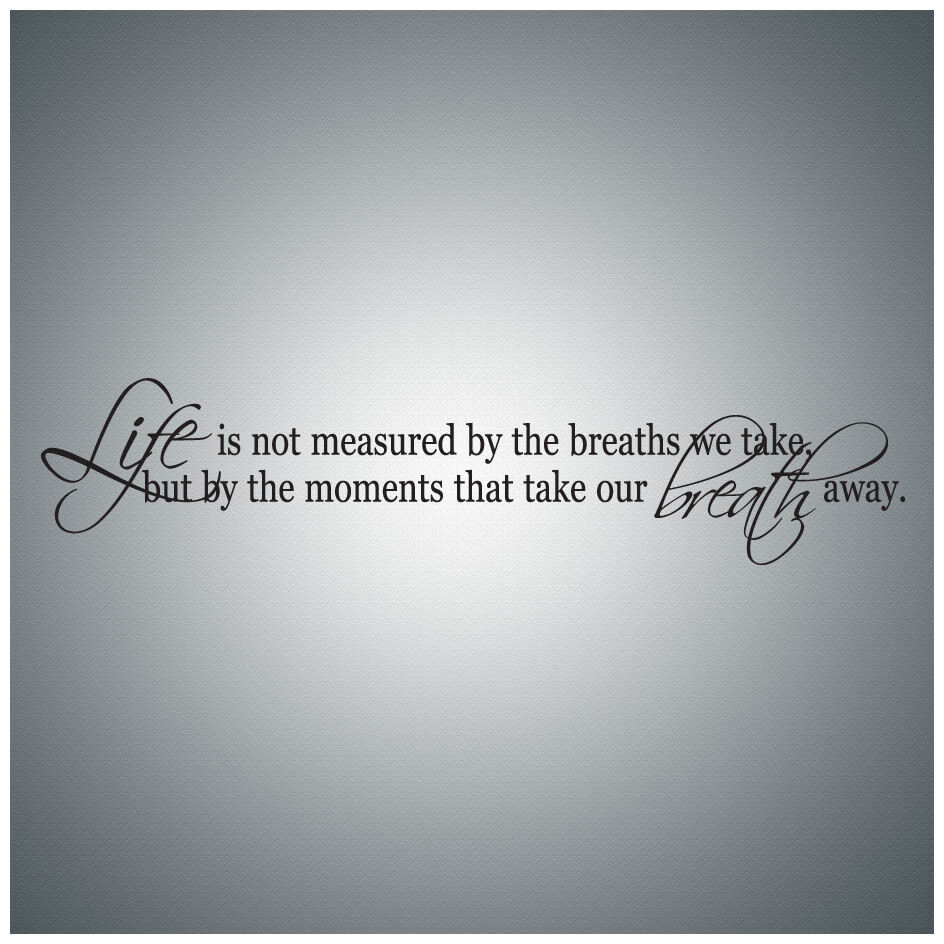 Life Is Not Measured By The Breaths Quote: Life Is Not Measured By The...WALL QUOTE DECAL VINYL