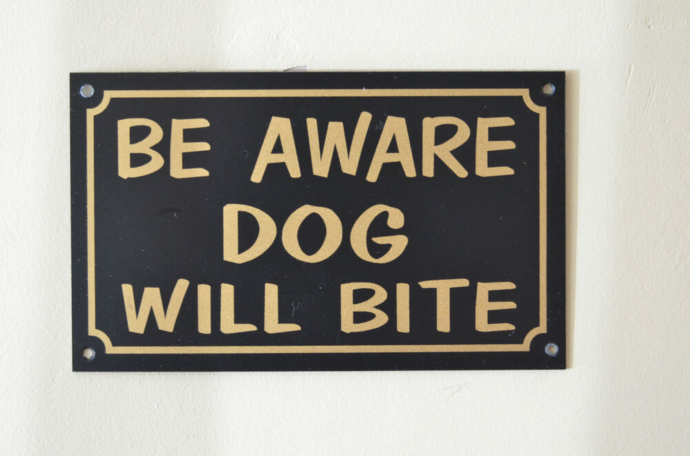 Be Aware Dog Will Bite Polite Warning Security Home Garden. Vmware Host Update Utility Garage Door Tampa. Care One Debt Settlement Apply For A Fha Loan. Ameritas Dental Insurance Coverage. Data Center Redundancy Book Publisher Company. Utility Trailer Storage Ideas. Free Consultation Personal Injury Lawyers. Cable Street Family Practice. Reverse Mortgages Pros And Cons