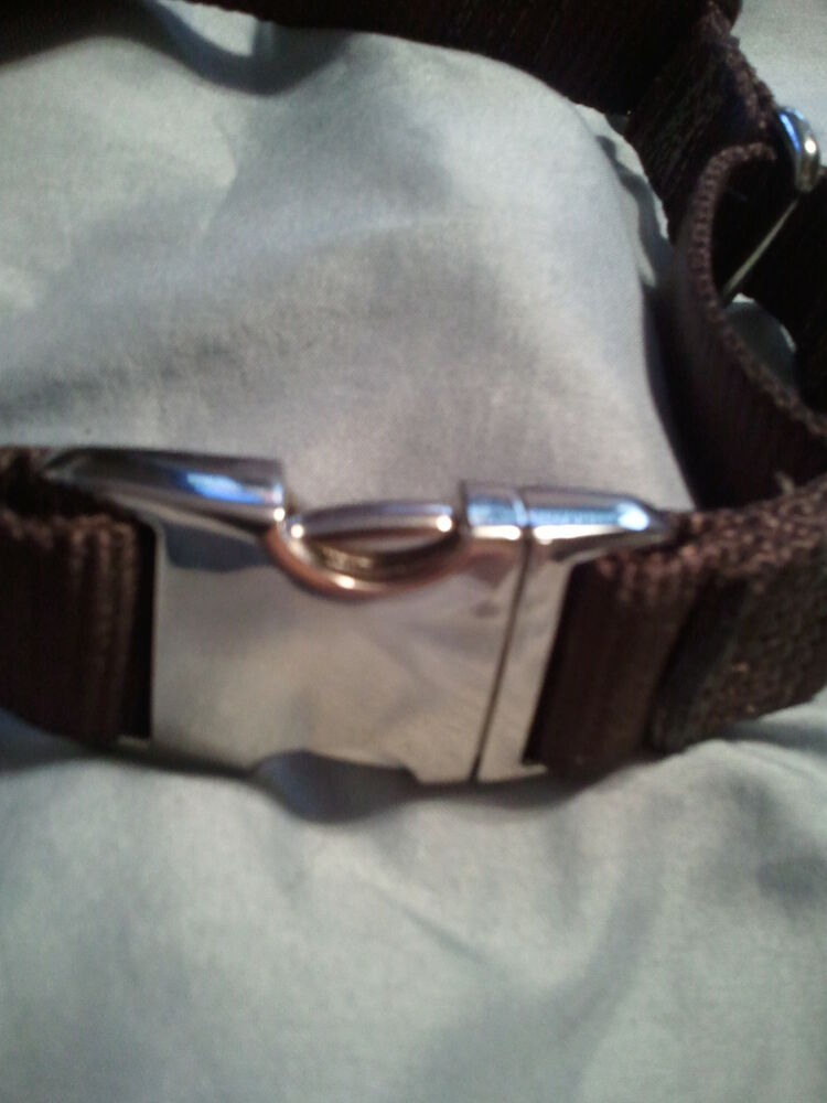 Dog Collar Buckles Metal