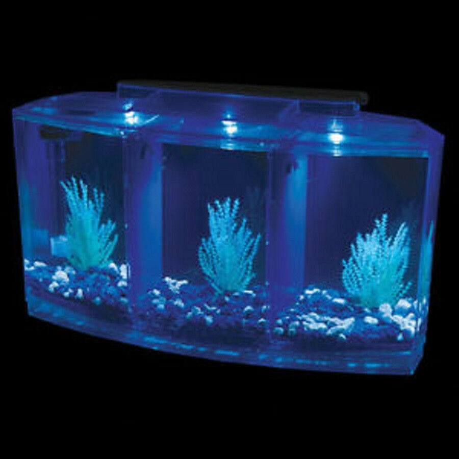 The triple betta tank 0 7 fish tank beta aquarium ebay for Fish tanks for sale ebay