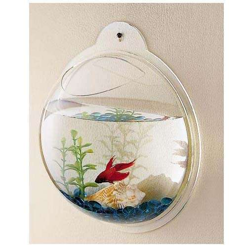 New fish wall mounted bowl aquarium wall hanging tank for Fish wall mount