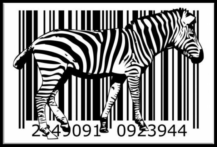 zeit4bild grafik abstrakt schwarz weiss zebra bilder leinwand giclee ebay. Black Bedroom Furniture Sets. Home Design Ideas